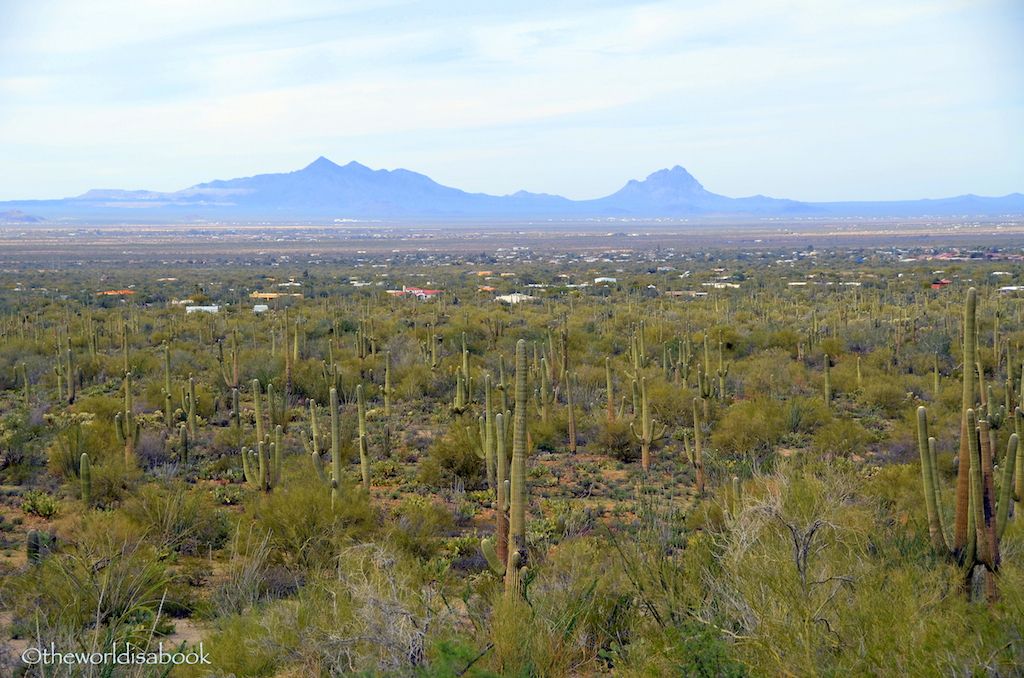 Saguaro National Park mountains