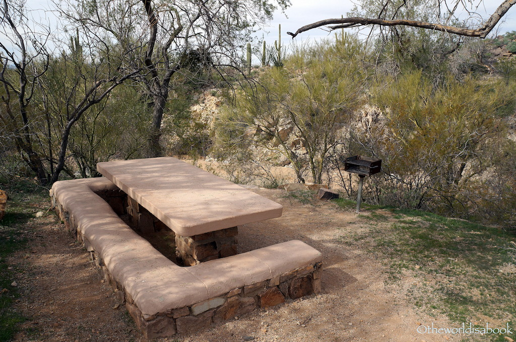 Saguaro National Park picnic