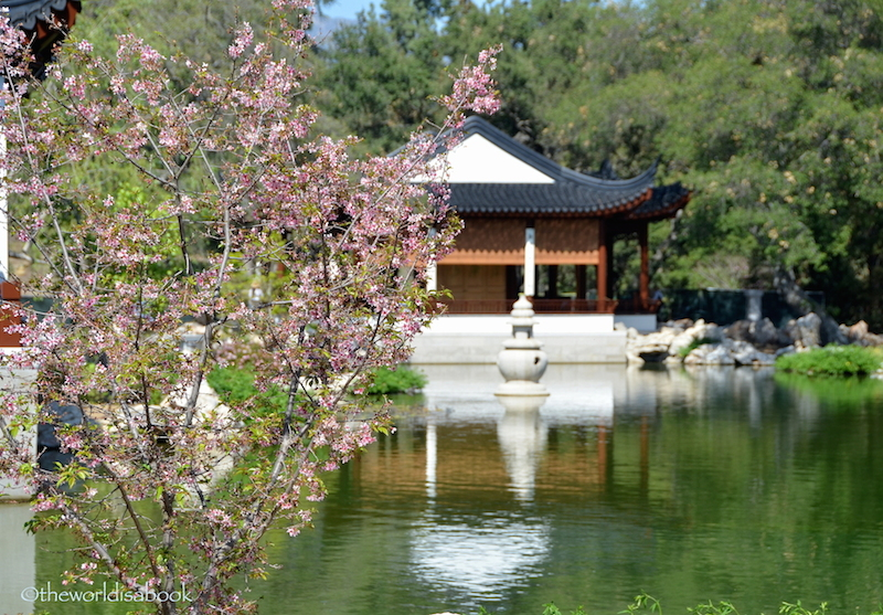 An Afternoon Stroll At The Huntington Library Art Collections And Gardens The World Is A Book