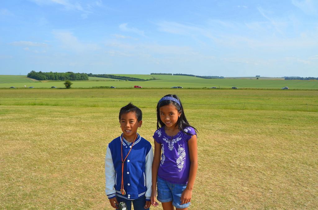 Stonehenge field