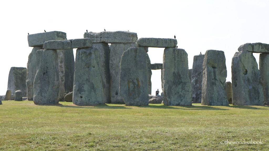 Stonehenge with birds
