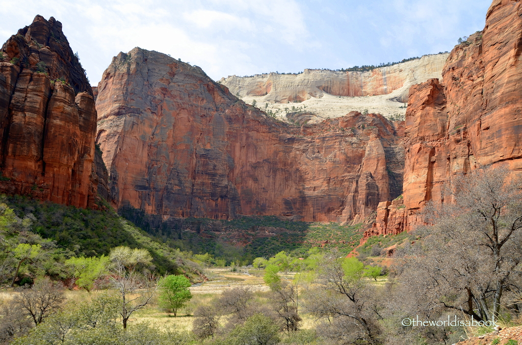 Zion National Park cliffwall