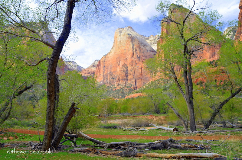 Zion National Park court of the Patriarchs