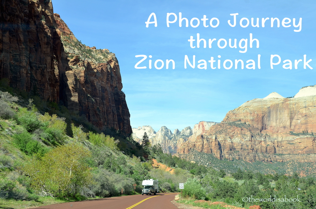 Zion National Park cover