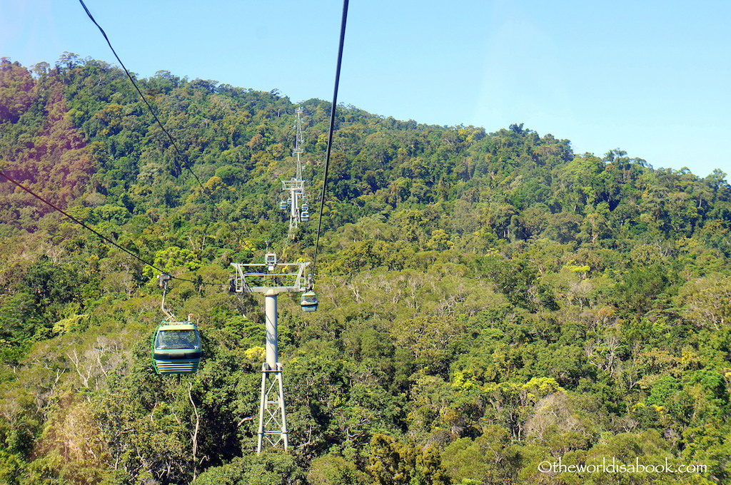 Skyrail Rainforest Cableway2