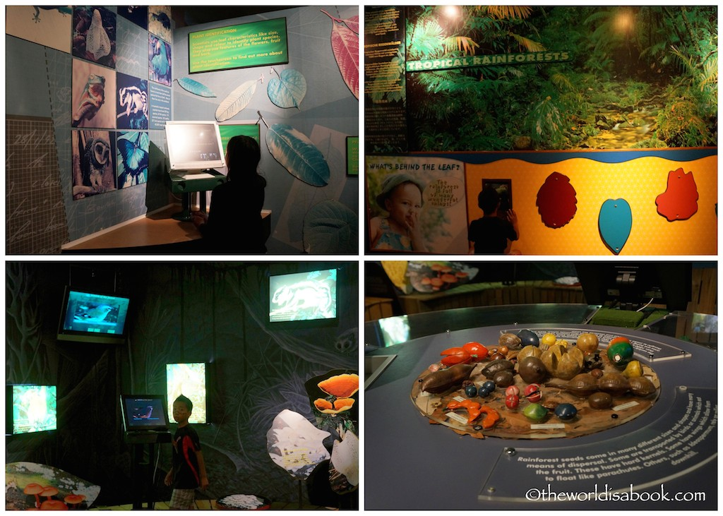 Skyrail Rainforest Interpretive Center