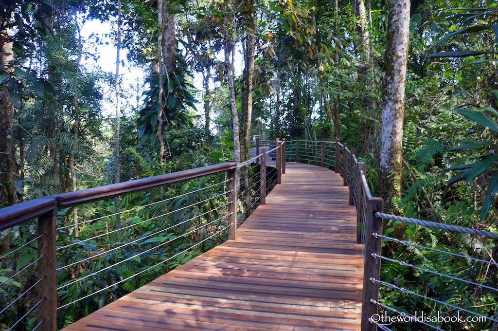 Skyrail rainforest boardwalk