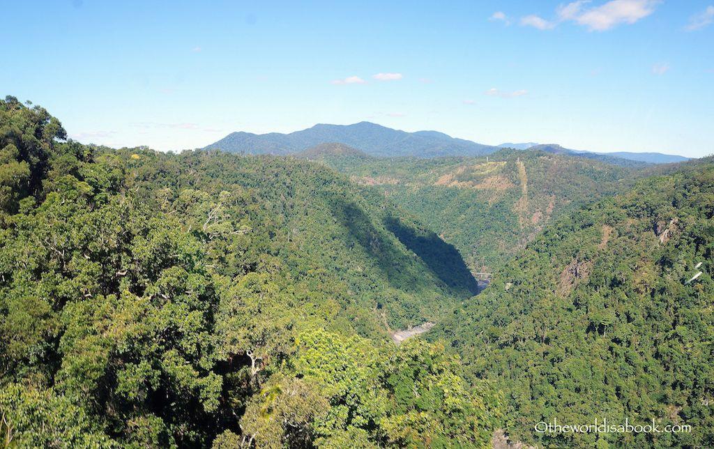 Tropical Rainforest Queensland