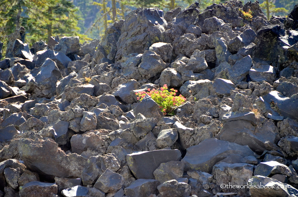 Wizard Island volcanic rocks