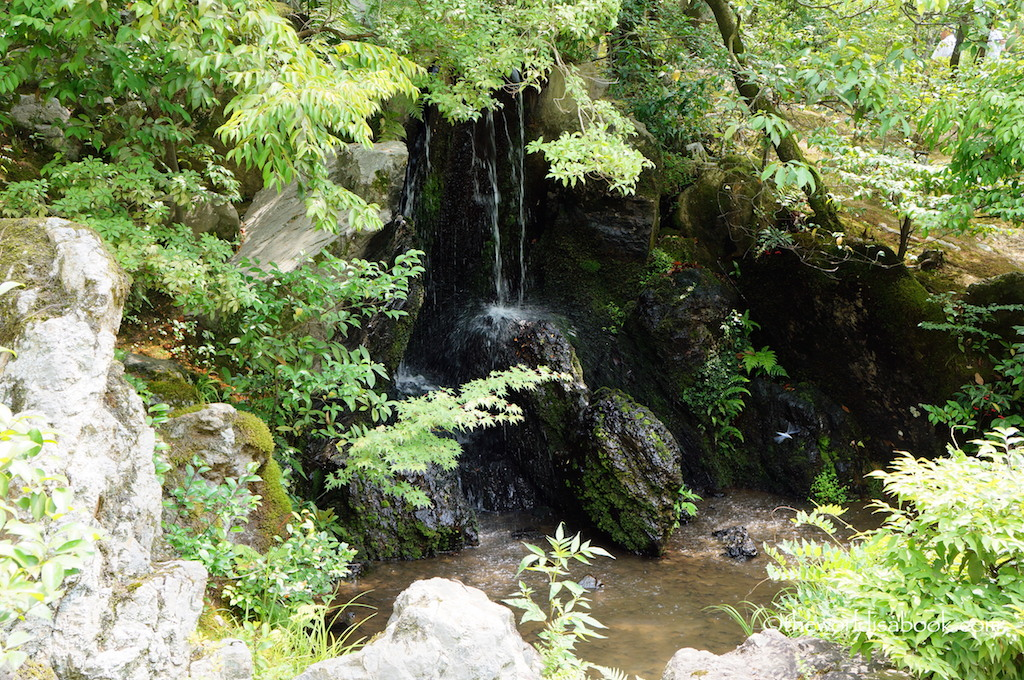 Kyoto Golden Pavilion waterfalls