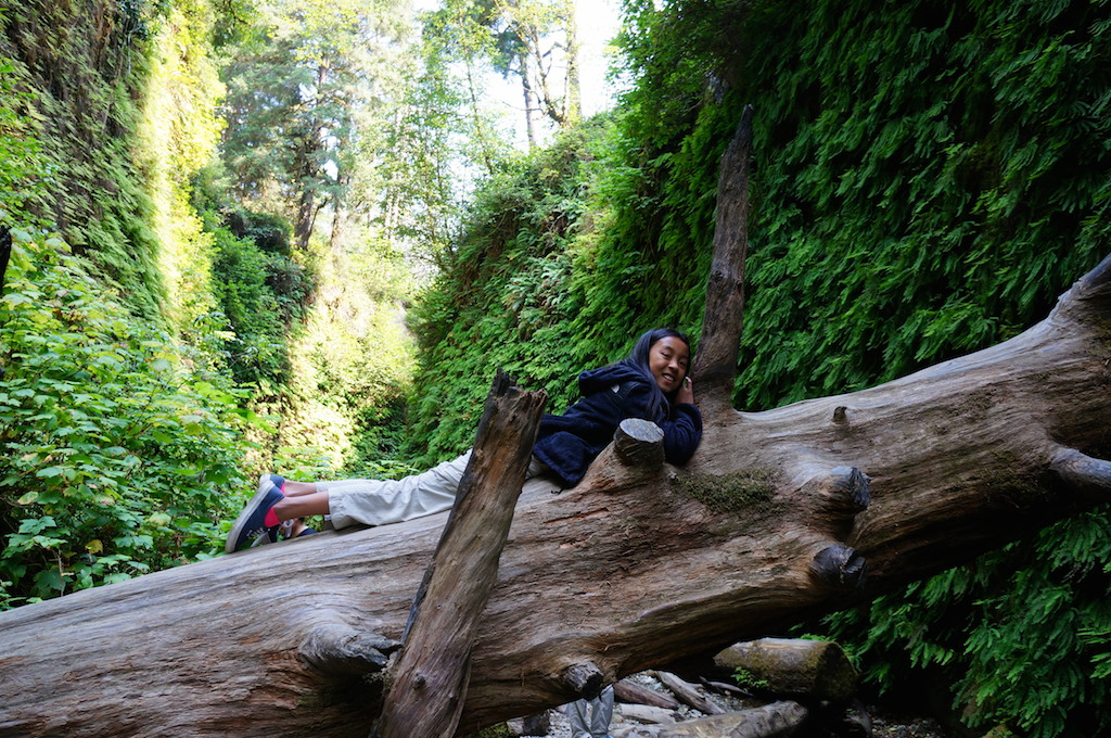 Fern Canyon with kids
