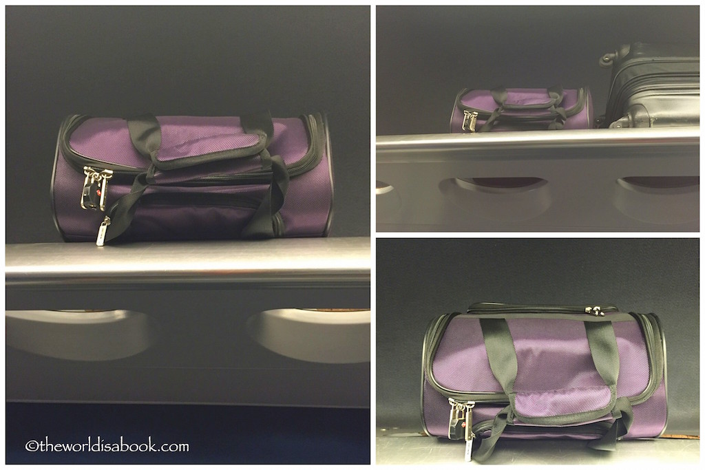 Travelon carryon on train
