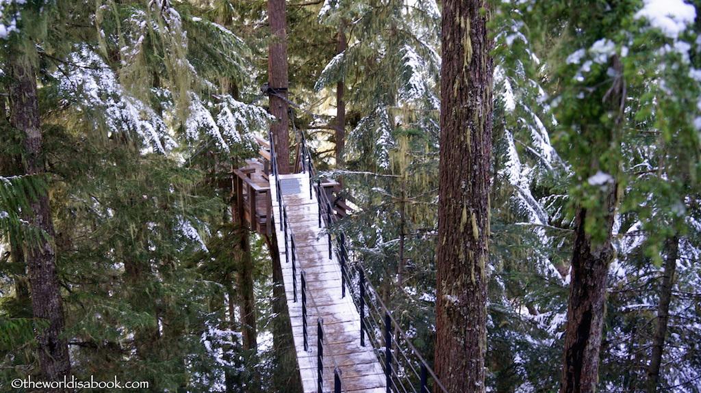 Whistler Ziptrek suspension bridge