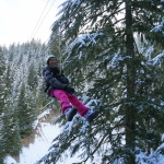 Winter Ziplining in Whistler with Ziptrek Ecotours