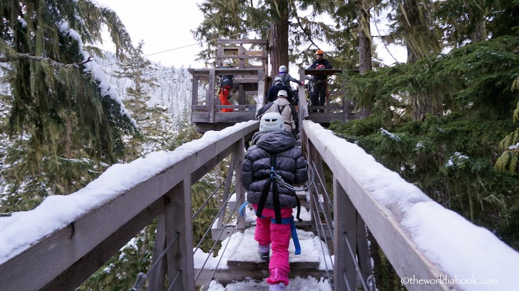 Whistler ziptrek tree platform