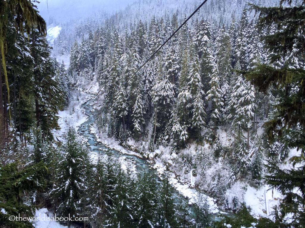 Whistler rainforest ziplining