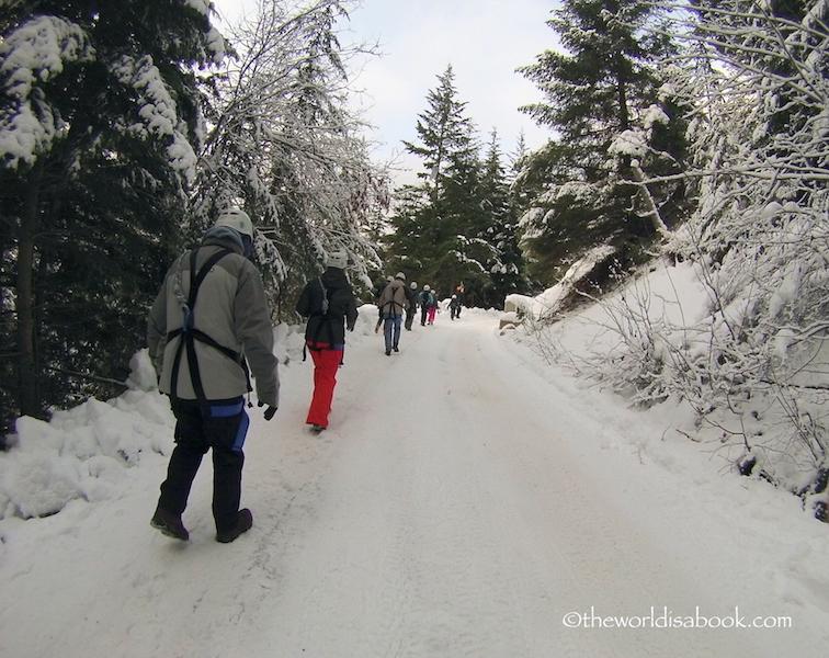 Whistler road Ziptrek ziplining