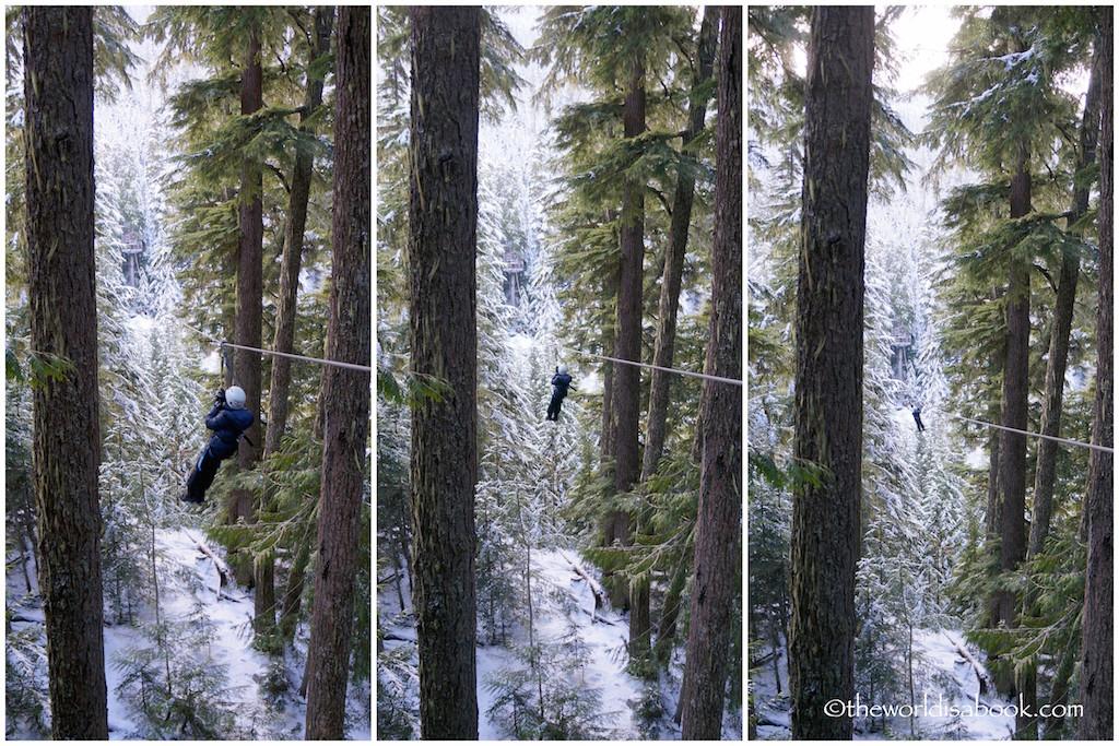 Ziptrek ziplining with kids