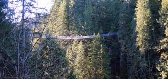 Adventures at Capilano Suspension Bridge Park
