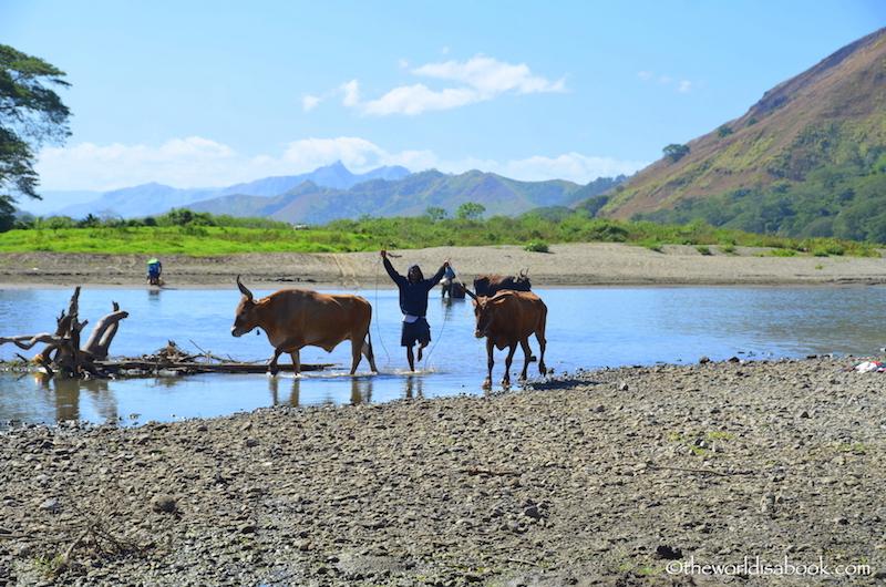 Fiji Sigatoka River Safari