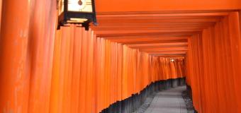 Trekking Through 10,000 Torii at Fushimi Inari Shrine Kyoto