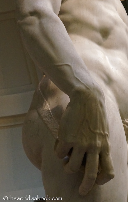 David Statue hand veins