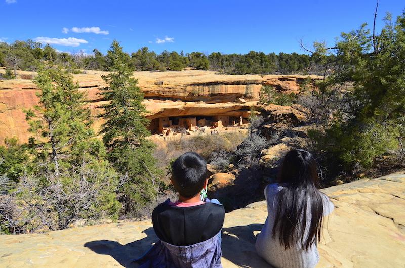 Mesa Verde with kids Spruce tree