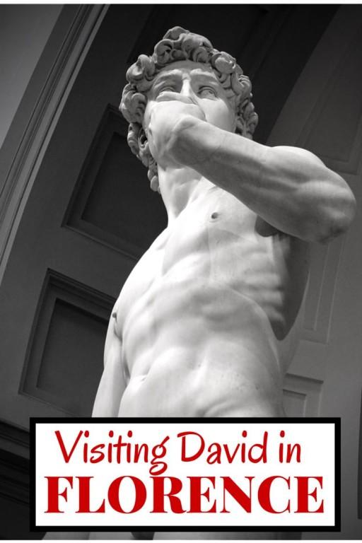 Michelangelo David Florence