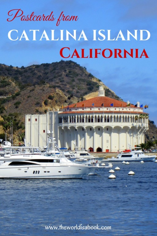 Postcards from Catalina Island