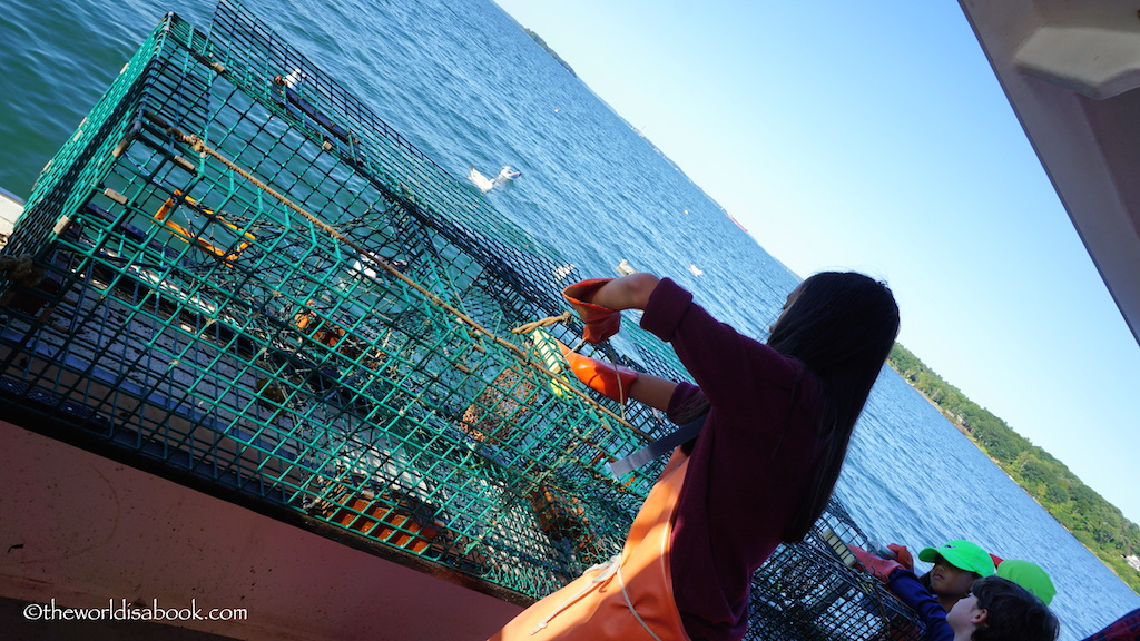 Maine Lobster trap