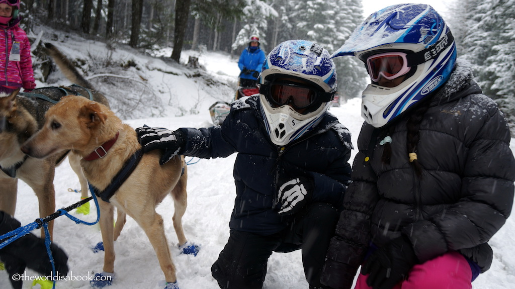 Dogsledding Whistler