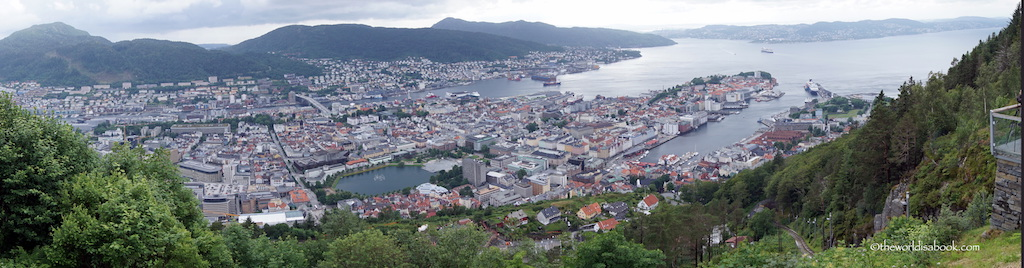 Bergen panoramic view