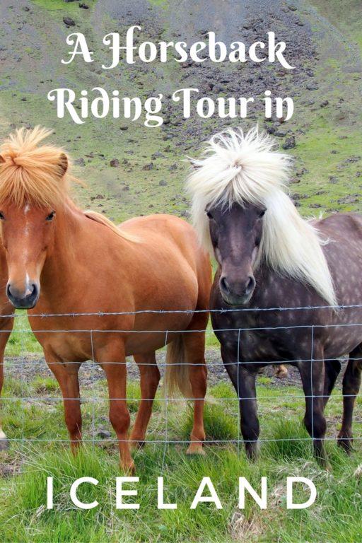 Horseback riding tour Iceland