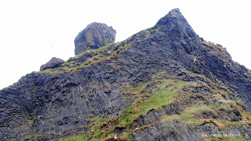 Reynisfjara iceland cliff with birds