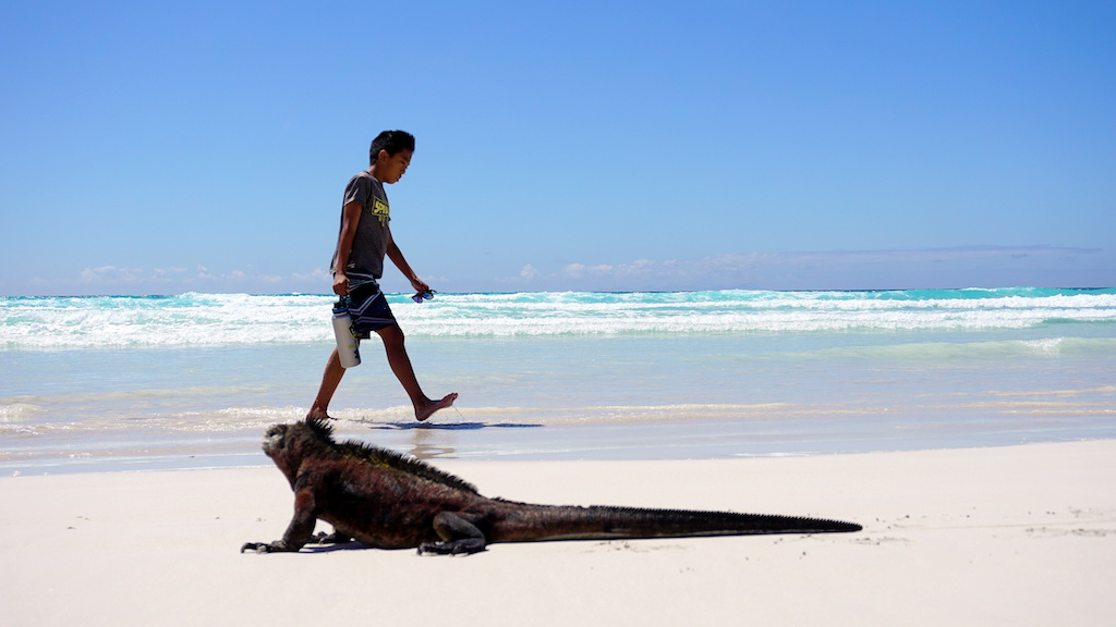 galapagos islands with kids