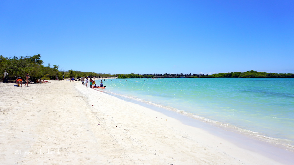 Playa Mansa Tortuga Bay Galapagos