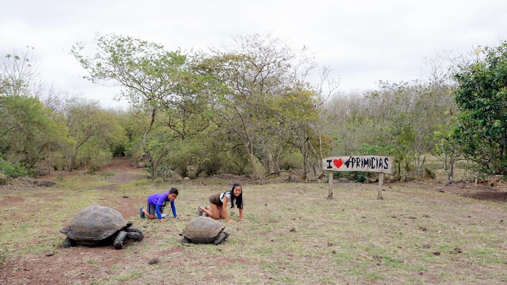 Rancho Primicias Santa Cruz