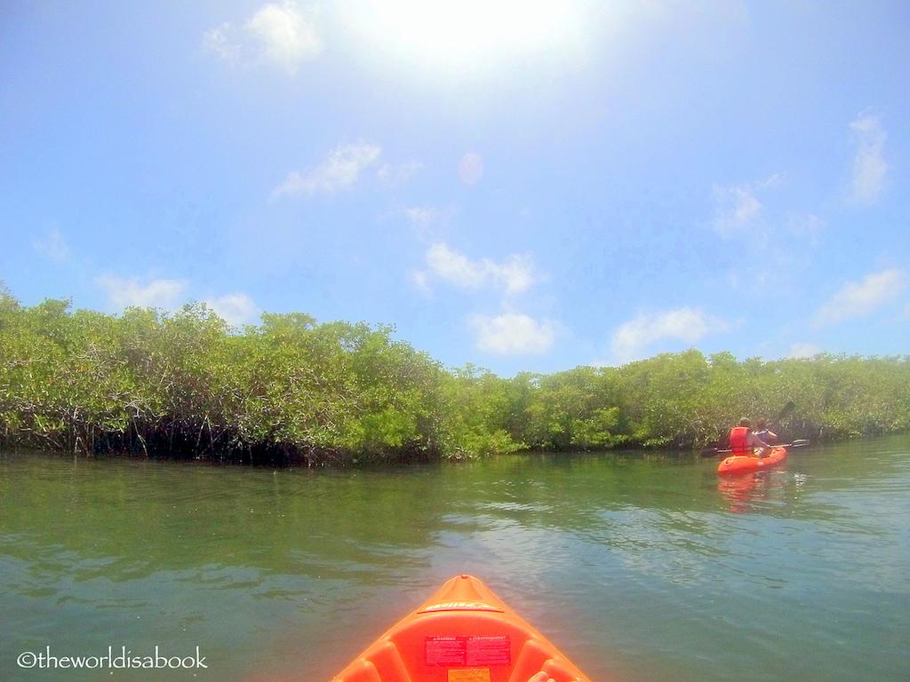 Kayaking at Tortuga Bay
