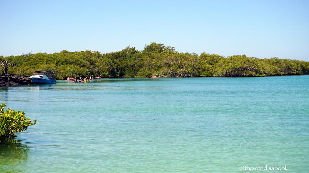 Tortuga Bay kayaks