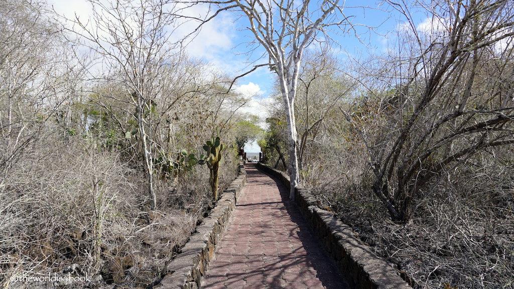 Tortuga Bay pathway Galapagos