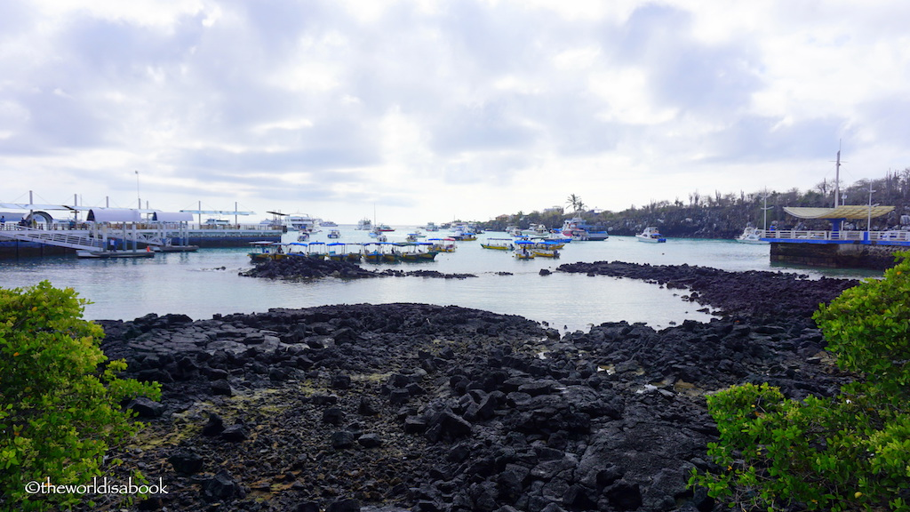 Galapagos Puerto Ayora harbor