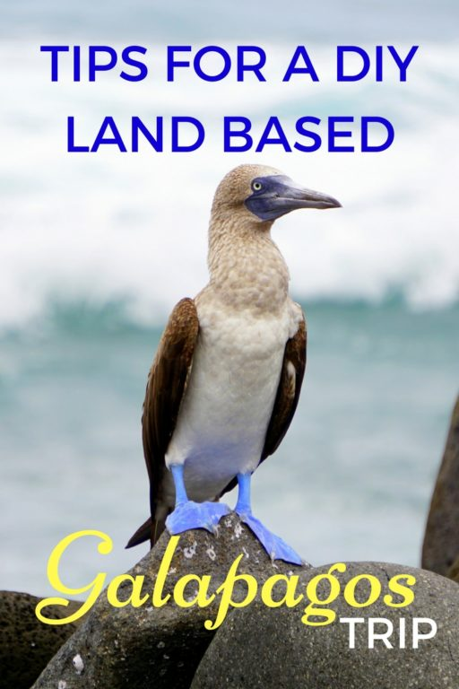 TIPS FOR LAND BASED GALAPAGOS