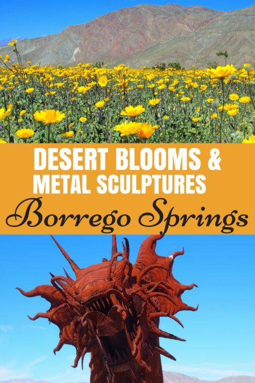Desert Blooms & Metal Art Borrego Springs