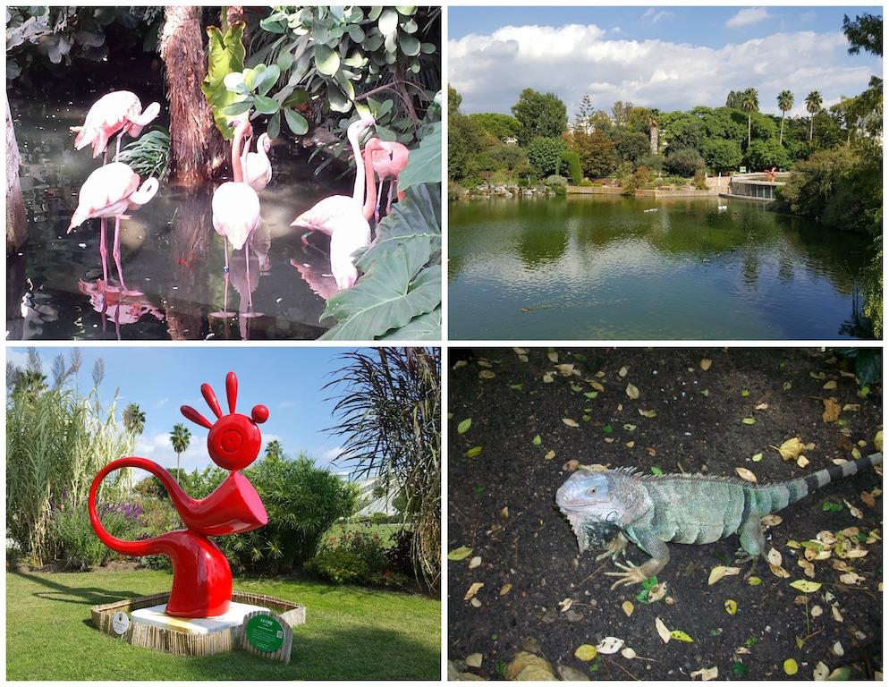 Parc Phoenix Nice France