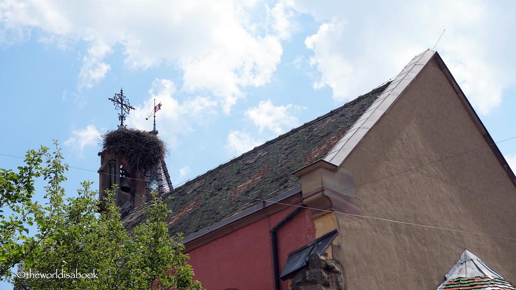 Eguisheim stork nest