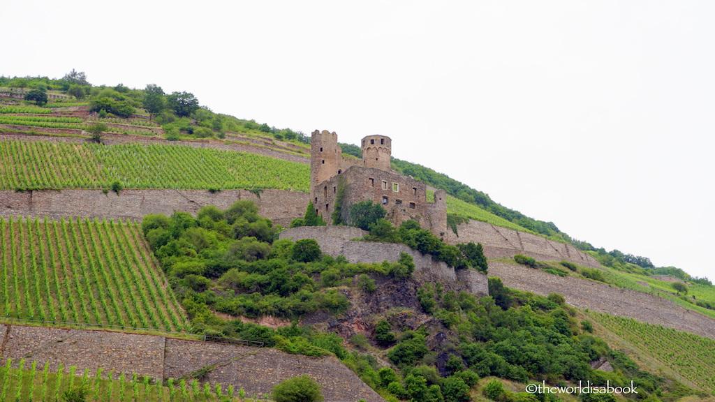 Rudesheim Rhine river castle