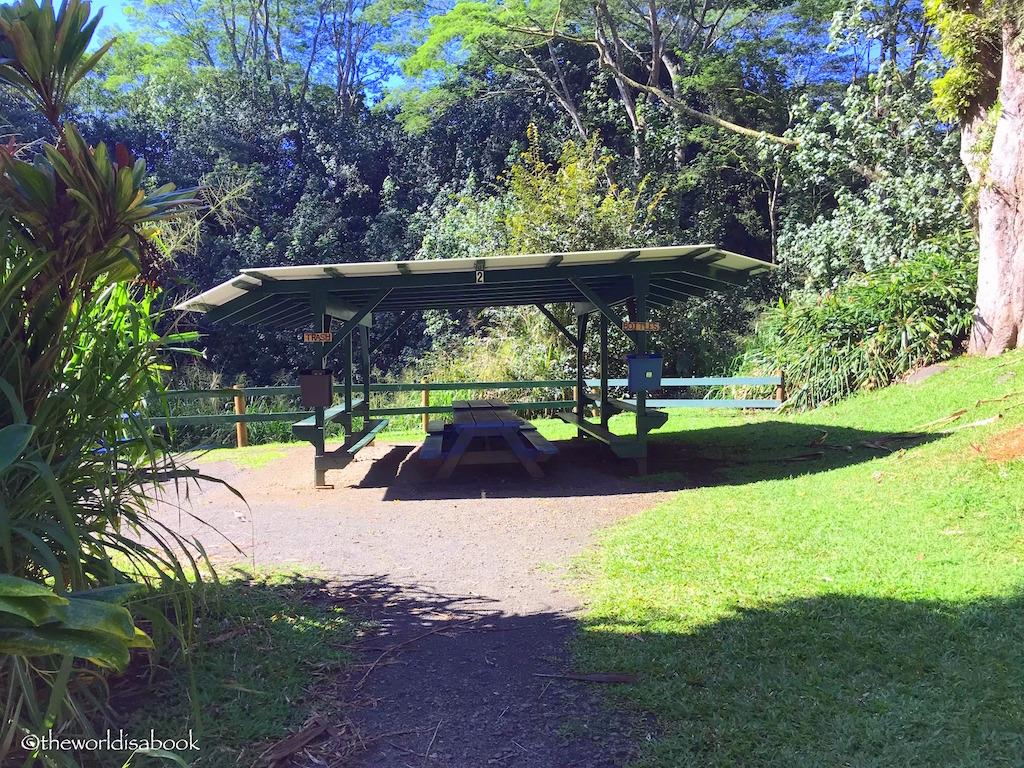 Kauai Backcountry adventures picnic spot