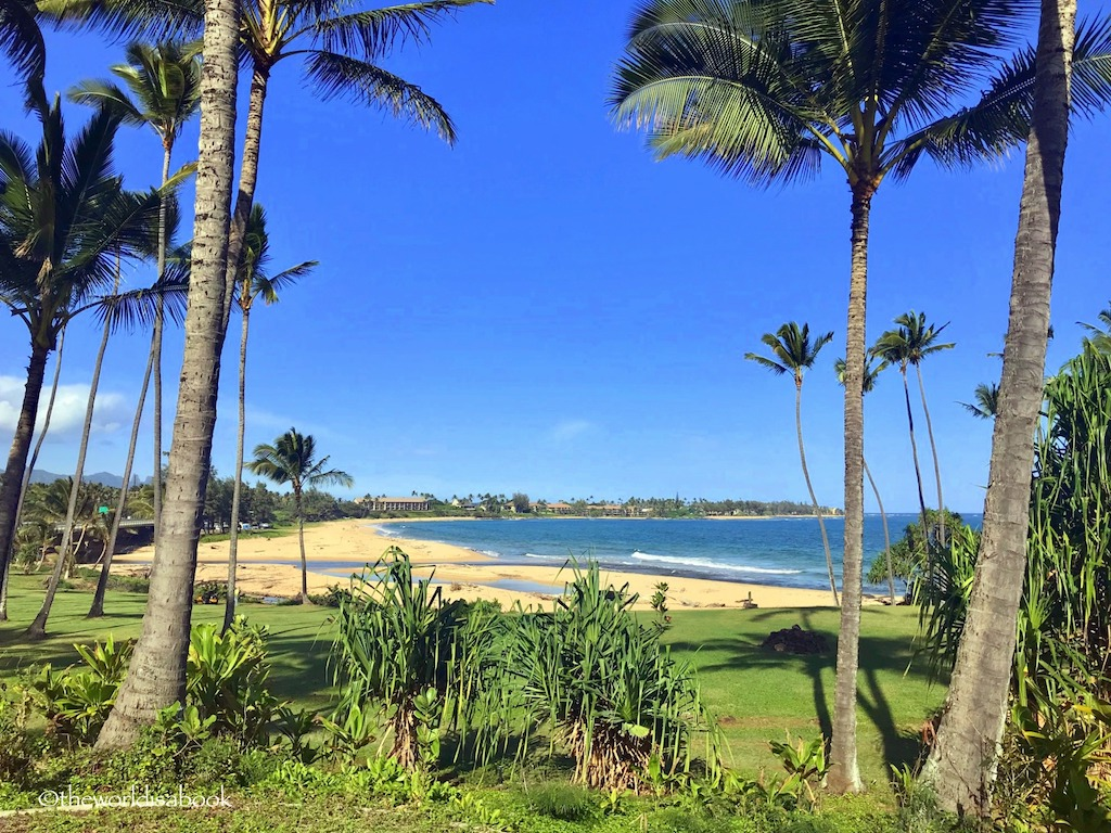 Things To Do With Kids In North Shore Kauai