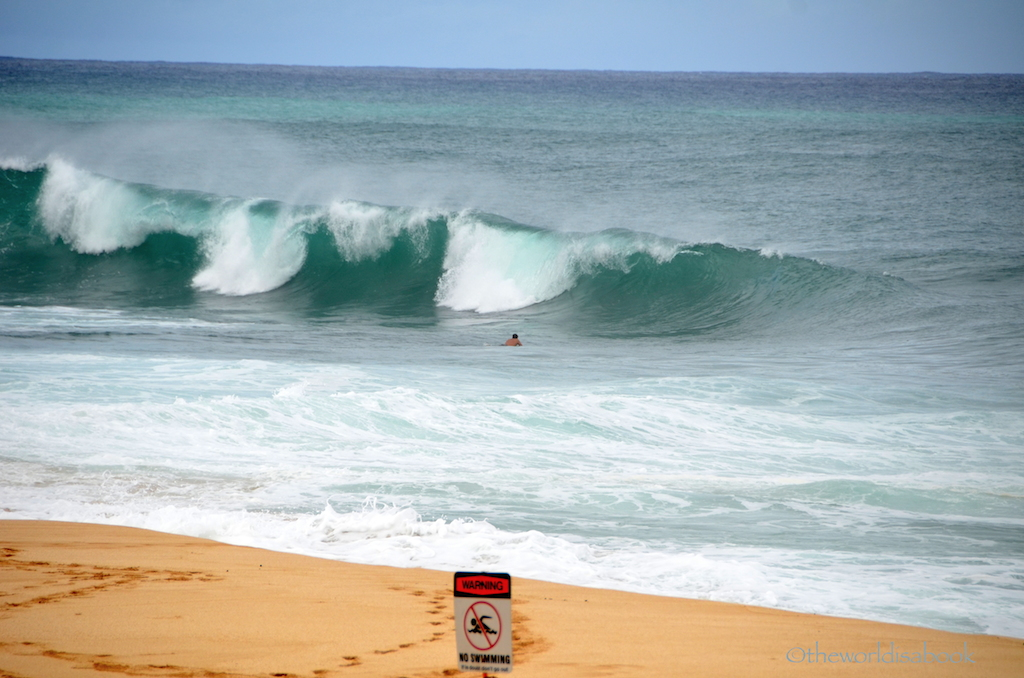 Surfers and Turtles: Visiting North Shore Oahu - The World